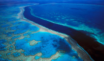 In fact, it was the best-managed reef system anywhere on the planet