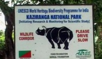 Park authorities in Kaziranga national park are now working hard to make all the arrangements for opening the park