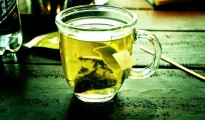 The results show that green tea polyphenols can help protect spinal cord neurons against oxidative stress exposure