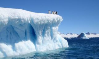 Increased snowfall over Antarctica is the sole process connected to global warming