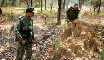 The Maoists are active in 18 of the 24 districts in Jharkhand
