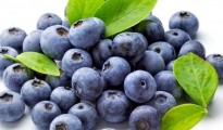 Low-income populations tend to know less about blueberry health benefits
