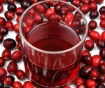 Cranberry extract reduced the severity of the bacterial infection