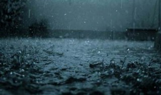 Manali too received rain on Friday, said the met department official