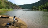 Once the state developed mahseer breeding technology, the next step would be ranching